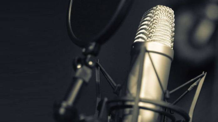 Microphone Anatomy