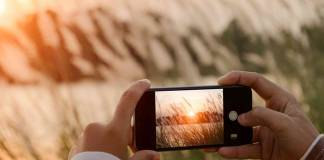 Hands filming grass with an iPhone