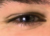 The Eye Light