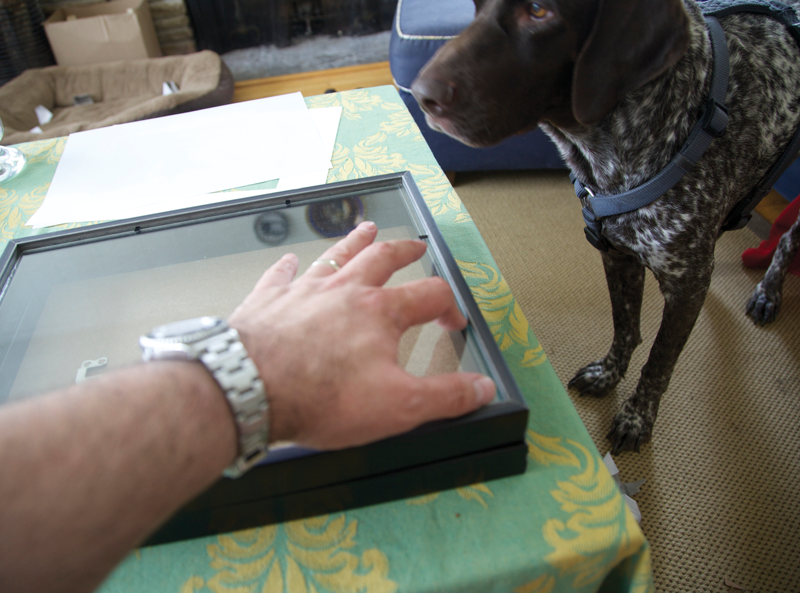 Photo of telepromter being assembled with dog watching.