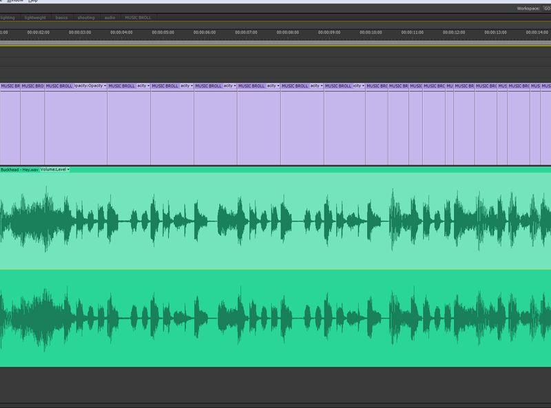Waveform of an audio clip in an editing timeline