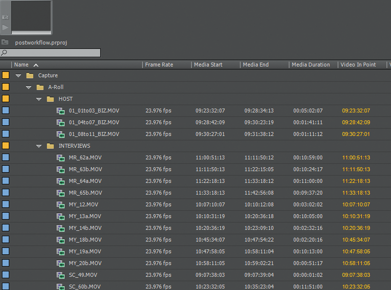 Screen grab of Premiere folder structure showing nested folders.