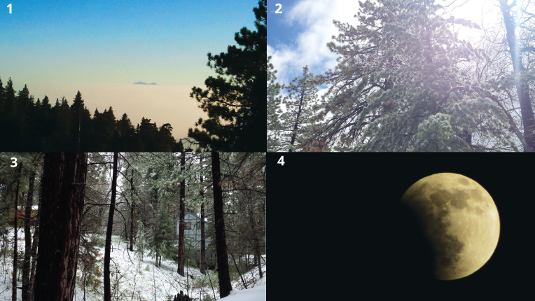 Photos illustrating the the progression from from morning to the high overhead sun of mid-day to the diffused light of the late afternoon to the full moon at night.
