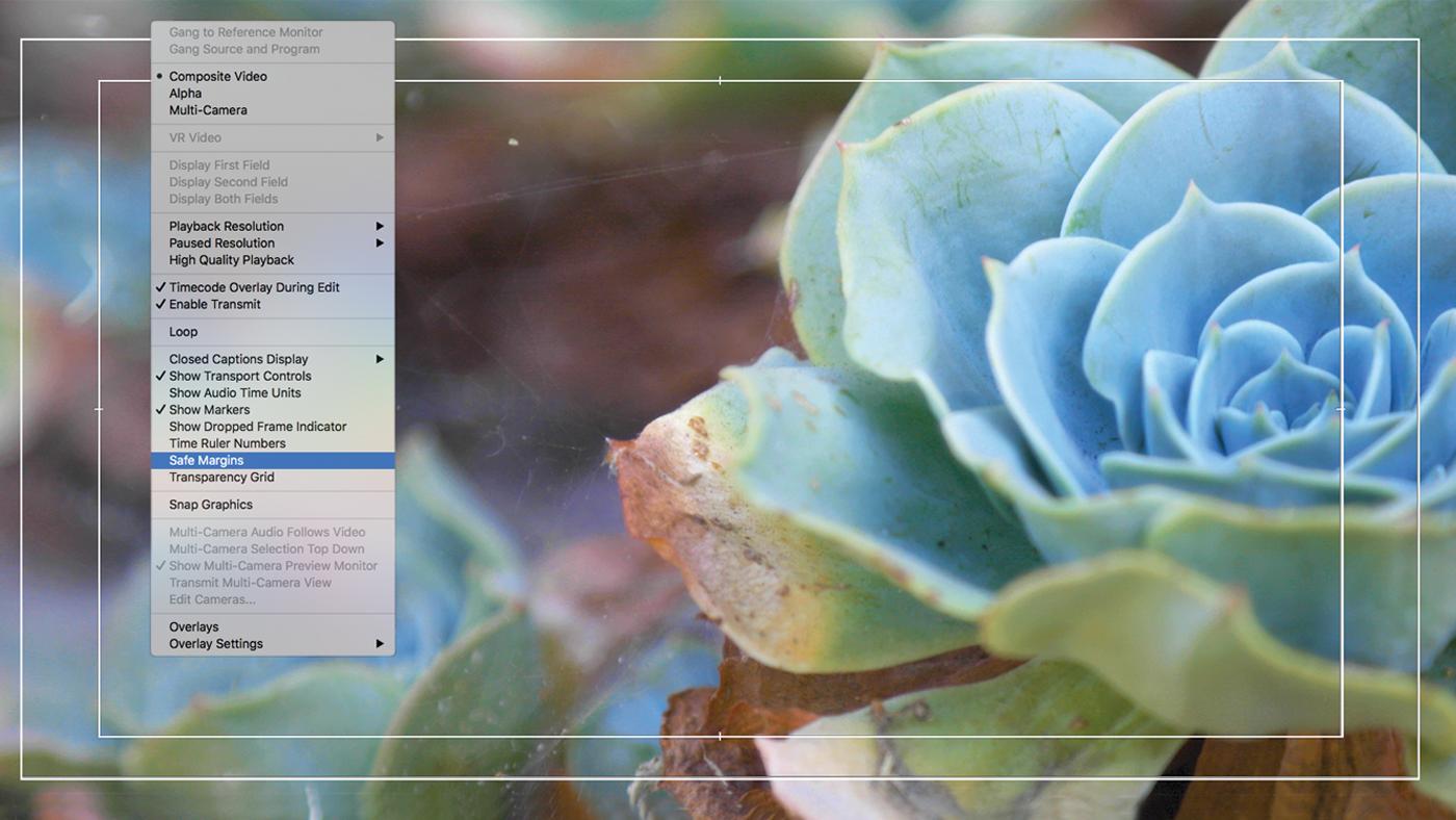 Editing interface showing Safe Margins