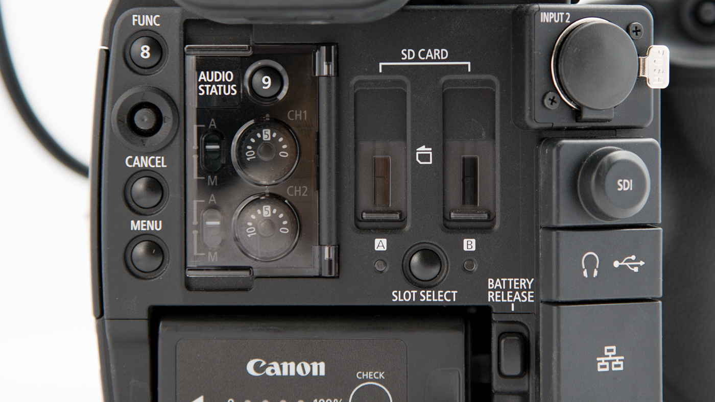 Rear panel controls and inputs