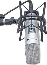 Microphone Jungle