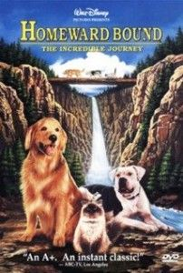 With Animal Movies You Have One Question to Answer