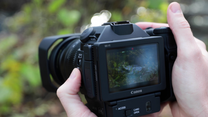 Canon XC15 in the field (Sponsored)